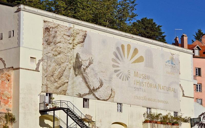 museus municipais